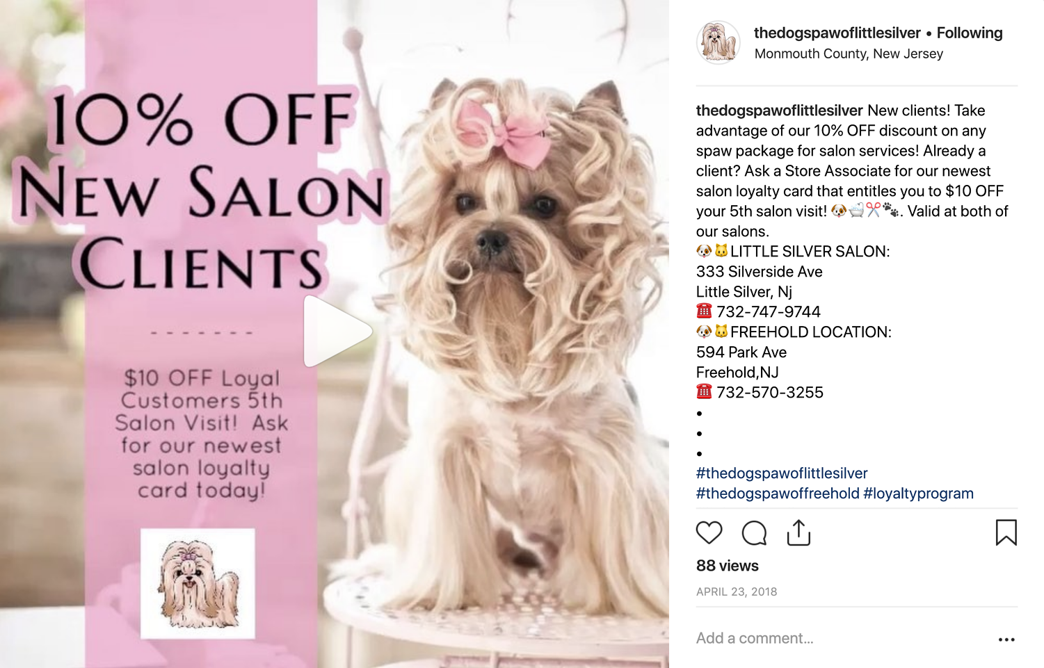 The Dogs Paw of Little Silver - Salon Discount