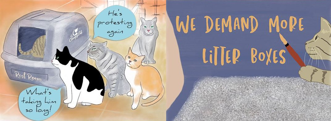 LitterBoxProtest