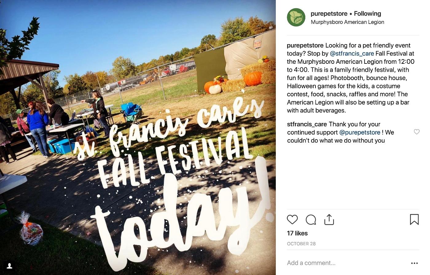 purepetstore-fall-festival
