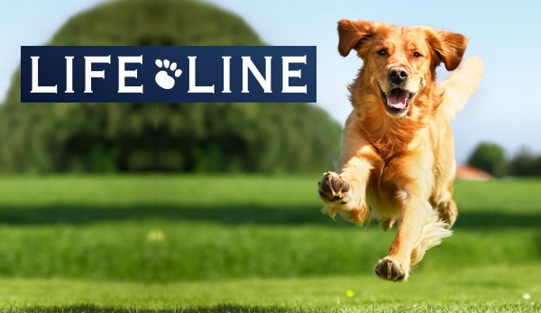 Life Line Pet Nutrition