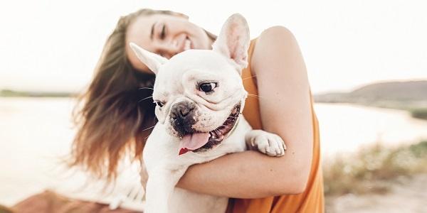 human trends pet industry trends