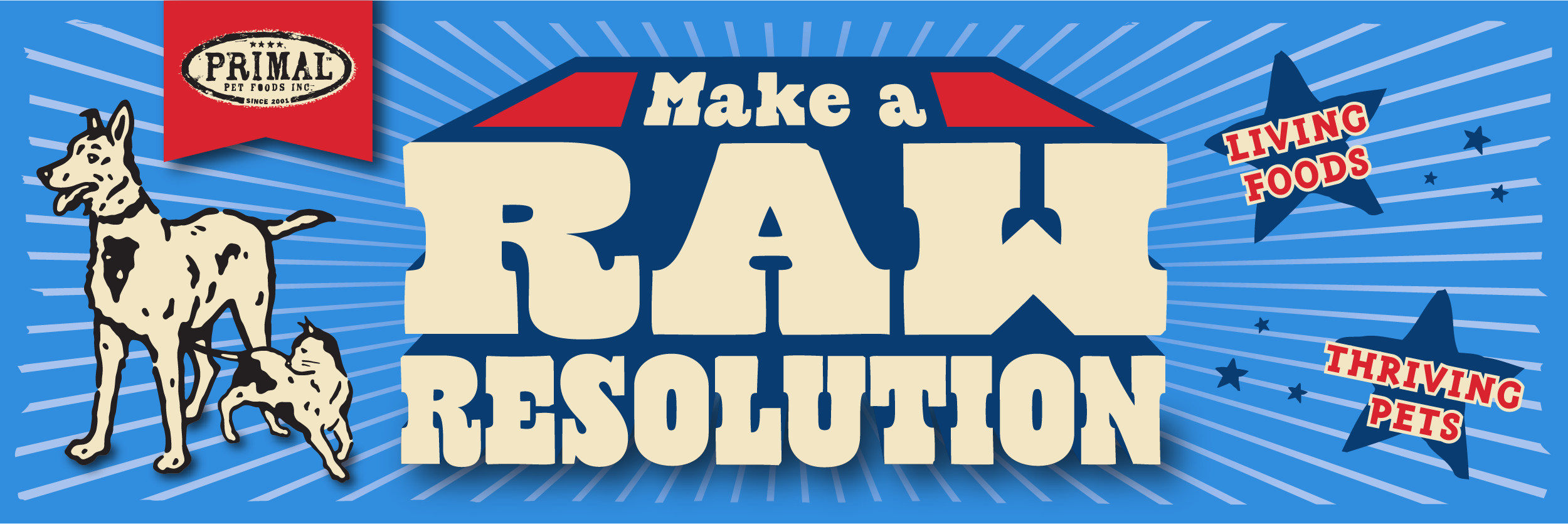 Begin 2019 by Making a Raw Resolution for Your Store